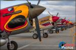 Curtiss P-40 Warhawks - Planes of Fame Airshow 2016: Day 2 [ DAY 2 ]