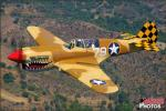 Curtiss P-40N Warhawk - Air to Air Photo Shoot - July 7, 2012